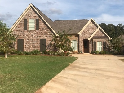 Pearl Single Family Home For Sale: 204 Village Place