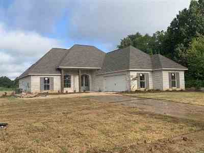 Canton Single Family Home For Sale: 123 Bridge Walk Dr