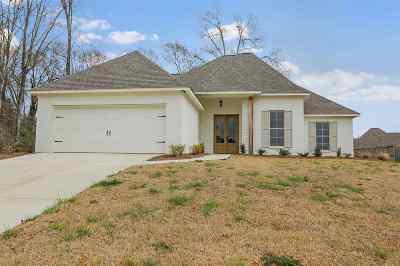 Canton Single Family Home For Sale: 122 Bridge Walk Dr