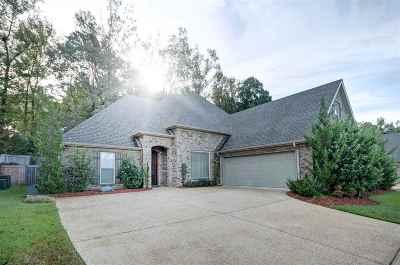 Brandon Single Family Home For Sale: 441 Julee Cir