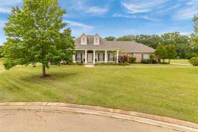 Flowood Single Family Home For Sale: 2007 Bradford Pl