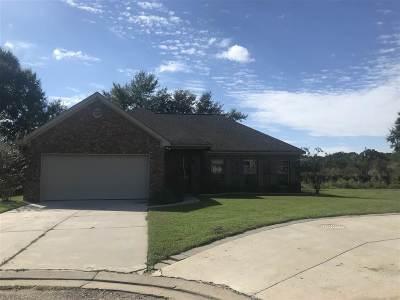 Rankin County Single Family Home Contingent/Pending: 310 Alicetown Ldg