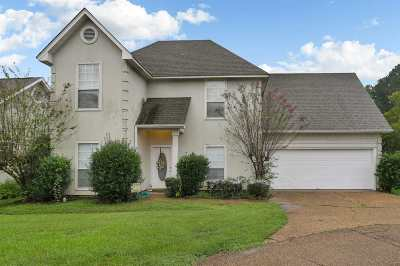 Clinton Single Family Home For Sale: 215 Shadow Lake Dr