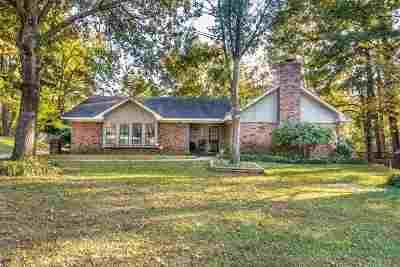 Clinton Single Family Home For Sale: 405 Trailwood Dr