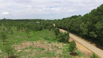 Brandon Residential Lots & Land For Sale: Little Woods Rd