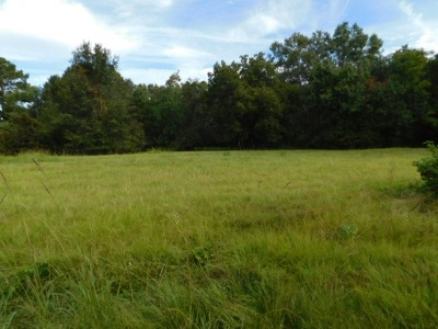 Madison Residential Lots & Land For Sale: Crawford Rd
