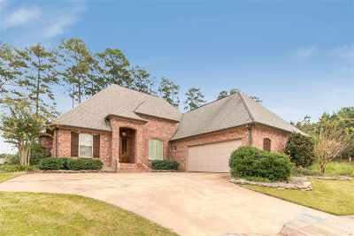 Brandon Single Family Home Contingent/Pending: 208 Willow Crest Cv