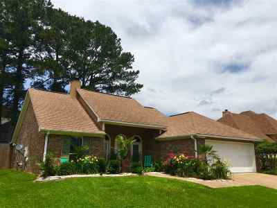 Brandon Single Family Home For Sale: 3008 East Fairway St