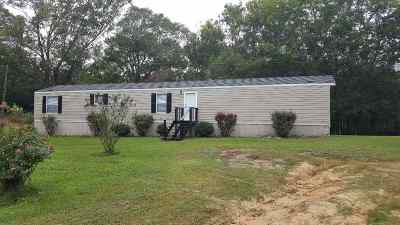 Rankin County Mobile/Manufactured For Sale: 125 Conger Dr