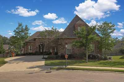 Brandon Single Family Home For Sale: 302 Pinnacle Cv
