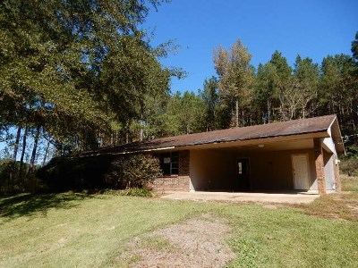 Smith County Single Family Home For Sale: 21987 18 Hwy