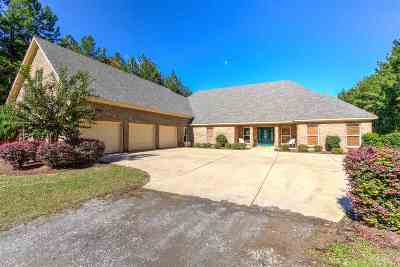 Brandon Single Family Home For Sale: 347 Rankin Rd