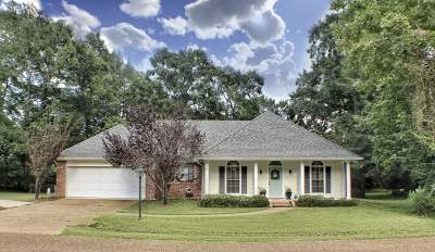 Hinds County Single Family Home For Sale: 205 Elm Dr