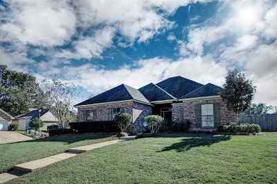 Brandon Single Family Home For Sale: 501 Pinebark Cv