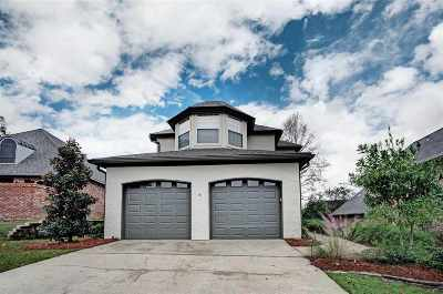 Brandon Single Family Home For Sale: 516 Beacon Cv
