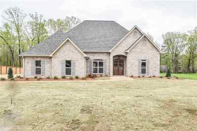 Pearl Single Family Home For Sale: 582 Asbury Lane Dr