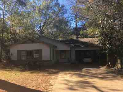 Hinds County Single Family Home For Sale: 408 W Leavell Woods Dr