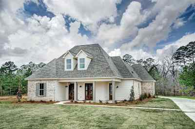 Rankin County Single Family Home For Sale: 579 Asbury Lane Dr