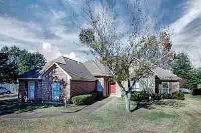 Ridgeland Single Family Home For Sale: 326 Semoia Ln