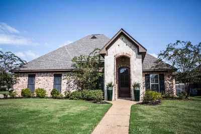 Brandon Single Family Home Contingent/Pending: 301 Siltstone Ridge