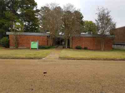Hinds County Commercial For Sale: 4840 McWillie Dr