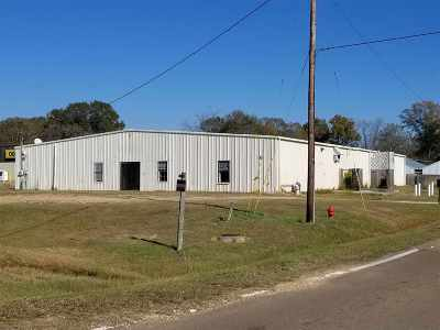 Leake County Commercial For Sale: 128 Hwy 35 Hwy