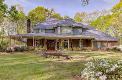 Hinds County Single Family Home For Sale: 415 Warwick Rd