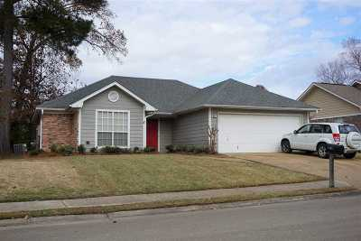 Brandon Single Family Home For Sale: 341 Water Oak Dr