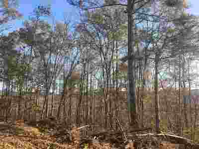Attala County Residential Lots & Land For Sale: 3 Old Hwy 35