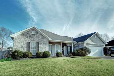 Brandon Single Family Home Contingent/Pending: 2040 S Cobblestone Cv