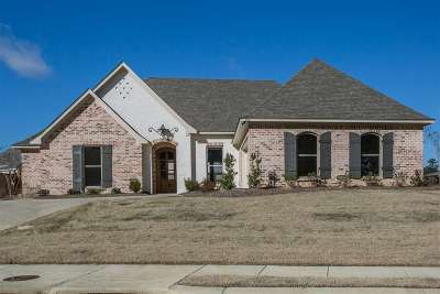 Brandon Single Family Home For Sale: 404 Brazos Dr