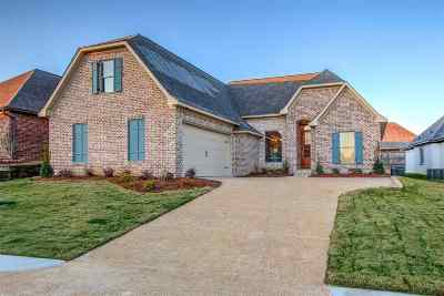 Brandon Single Family Home For Sale: 407 Emerald Trail Dr