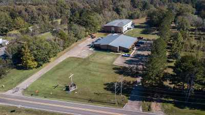 Hinds County Commercial For Sale: 6706 Siwell Rd.