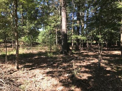 Clinton Residential Lots & Land For Sale: 18 Bentwood Dr
