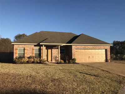 Brandon Single Family Home For Sale: 535 Kate Lofton Dr