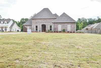 Rankin County Single Family Home For Sale: 574 Asbury Lane Dr