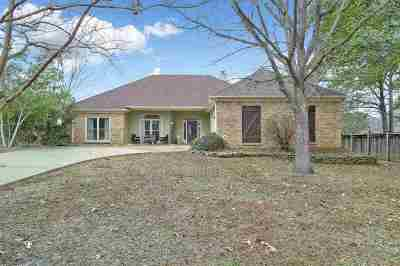 Ridgeland Single Family Home For Sale: 302 Tecumseh Cv