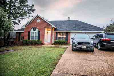 Ridgeland Single Family Home For Sale: 704 Oak Lawn Ln