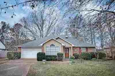 Hinds County Single Family Home For Sale: 113 Waterfall Way