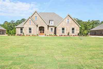 Rankin County Single Family Home For Sale: 583 Asbury Lane Dr