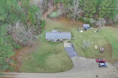 Brandon Single Family Home For Sale: 167 McLin Cv