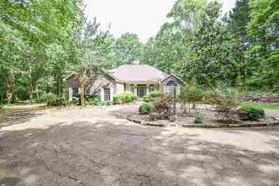 Rankin County Single Family Home For Sale: 414 Point Dr