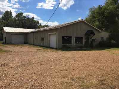 Leake County Commercial For Sale: 521 S Van Buren St