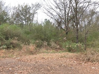 Ridgeland Residential Lots & Land For Sale: Midway Ave