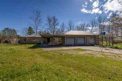 Canton Single Family Home For Sale: 189 Sowell Rd