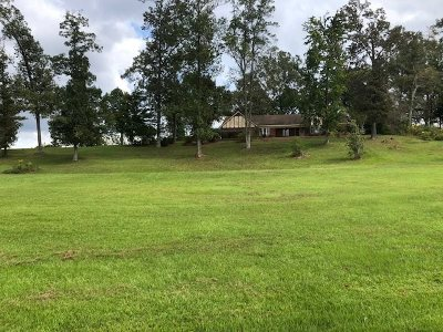 Smith County Single Family Home For Sale: 2694 Hwy 501