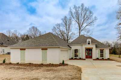 Clinton Single Family Home For Sale: 209 Copper Creek Dr