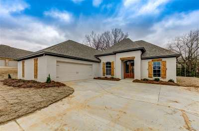 Clinton Single Family Home For Sale: 249 Stoney Ridge Dr