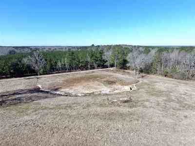 Brandon Residential Lots & Land For Sale: 1246 Ashley Rd