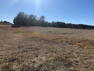 Canton Residential Lots & Land For Sale: 750 Twelve Oaks Trace
